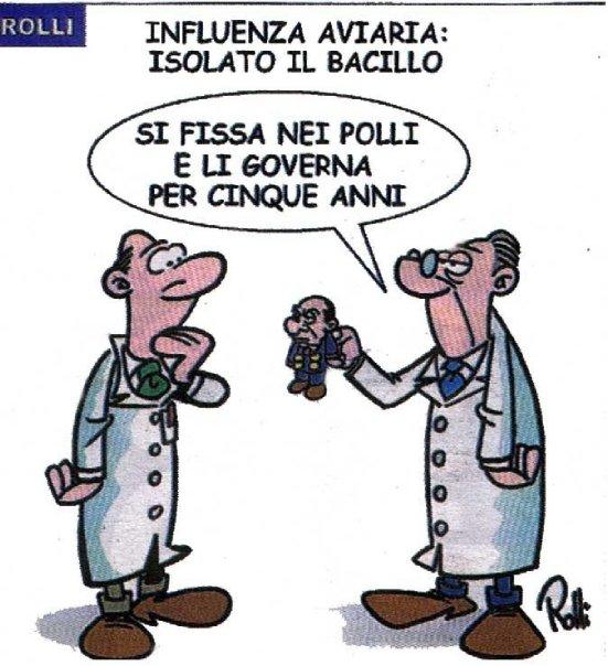 bacillo1