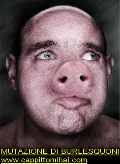 b-porc