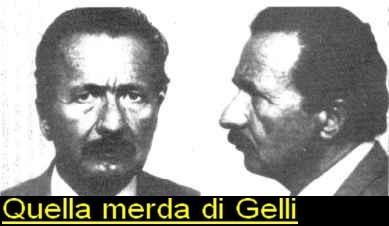 gelli11