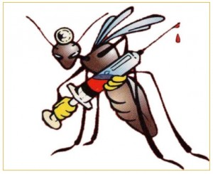 zanzara_001