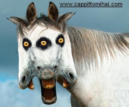 apocalyptic_horse