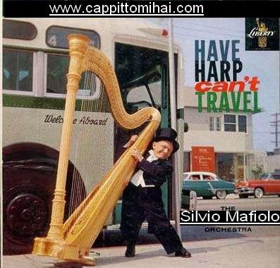 silvio_musicista