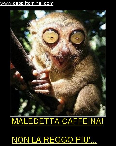 maledetti caffe
