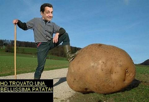 sarko-patata
