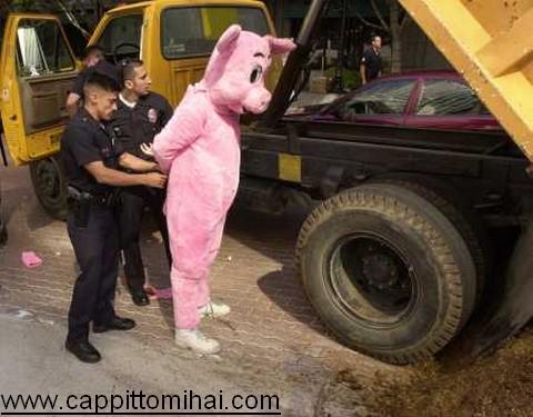 b.arrestato