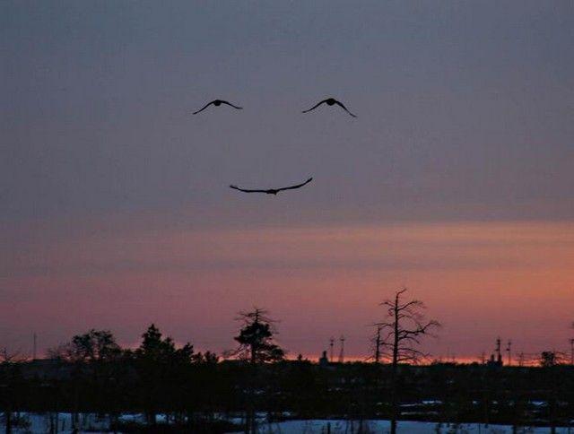 smilesky
